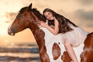 פורטרט עם סוס בשקיעה
